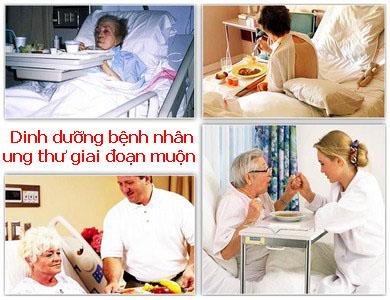 Chăm sóc dinh dưỡng cho bệnh nhân ung thư giai đoạn muộn