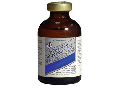 epinephrin-thuoc-chong-loan-nhip-tim