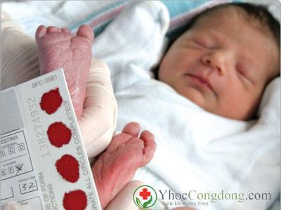 Lấy máu sàng lọc sơ sinh