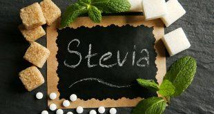 Stevia - chất làm ngọt tự nhiên không chưa calo