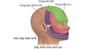 dây thần kinh sinh ba