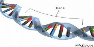 Bệnh di truyền và những xét nghiệm giúp phát hiện bệnh di truyền