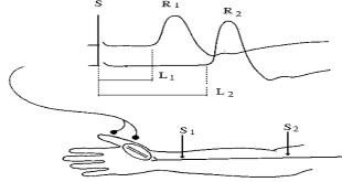 khảo sát dẫn truyền thần kinh