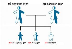 Bệnh di truyền gen lặn