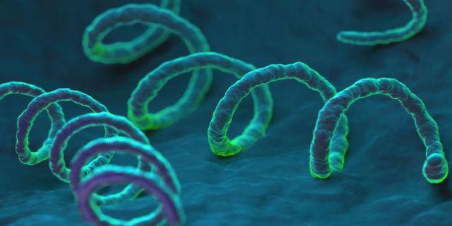 bệnh lâụ bệnh chlamydia và bệnh giang mai