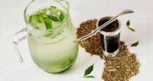 Trà Yerba Mate – Thức uống bổ dưỡng hay nguy cơ đối với sức khoẻ?