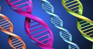 xét nghiệm tầm soát người mang mầm gen bệnh trước khi mang thai
