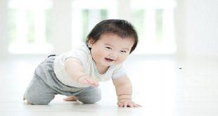 chăm sóc trẻ khỏe giai đoạn 12 tháng tuổi