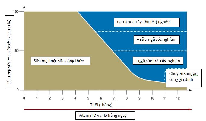 Hình 3: tỷ lệ phần trăm các thành phần thuộc chế độ ăn dặm trong năm đầu và chuyển sang ăn cùng gia đình vào cuối năm tuổi đầu tiên.