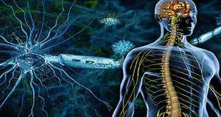 các tác dụng phụ trên hệ thần kinh trong quá trình điều trị ung thư