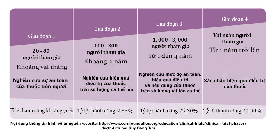 Hình 2. Thử nghiệm lâm sàng trên người thường có 4 giai đoạn với mục tiêu khác nhau.