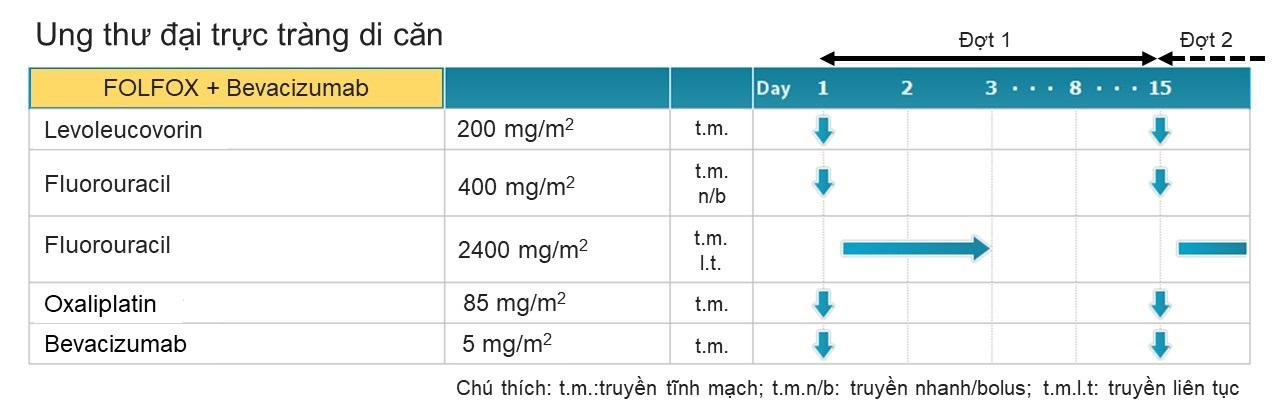 Hình 2. Minh họa phác đồ FOLFOX kết hợp với Bevacizumab. Mũi tên xanh chỉ ngày truyền thuốc.