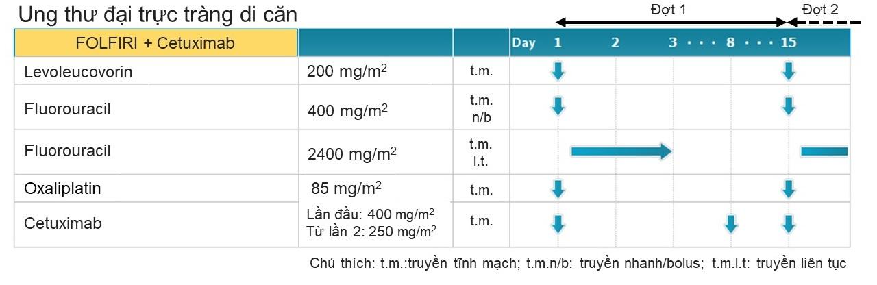 Hình 3. Minh họa phác đồ FOLFIRI kết hợp với Cetuximab. Mũi tên xanh chỉ ngày truyền thuốc.