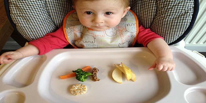 Đừng trì hoãn việc ăn thô, lợn cợn cho con bạn!
