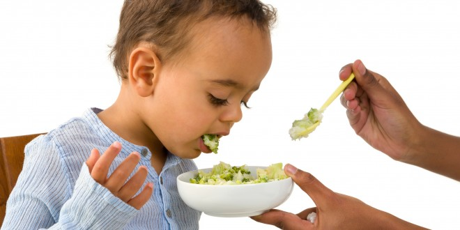 Tổng quan về cho trẻ ăn dặm giai đoạn 6 tháng - 12 tháng