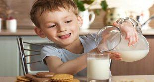 Uống sữa làm tăng đờm, đặc đờm trong viêm đường hô hấp
