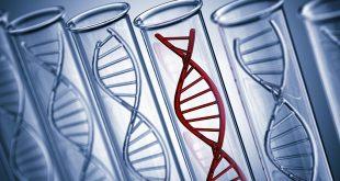 Giải trình tự gene trong điều trị ung thư