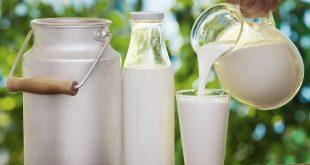 Khuyến nghị sử dụng sữa và chế phẩm sữa cho người Việt Nam