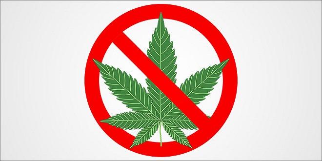 bùng phát hiện tượng chảy máu liên quan tới cannabinoid (cần sa) tổng hợp tại Hoa Kỳ