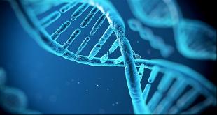 giải trình tự gen thế hệ mới và tình hình ở Việt Nam