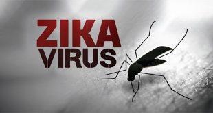 Một số thông tin về nhiễm Zika