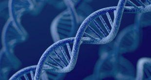 những điều cần biết về xét nghiệm gene trong tầm soát ung thư