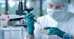 Cấy ghép tủy xương (Cấy ghép tế bào gốc) là gì?