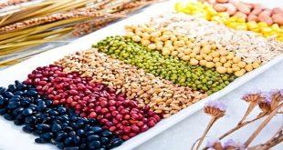 aflatoxin một loại độc tố nguy hiểm gây ung thư gan từ các loại ngũ cốc bị mốc