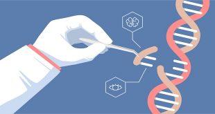 Sử dụng công nghệ CRISPR để chữa được tận gốc các bệnh di truyền của con người - ảo vọng hay thực tế?