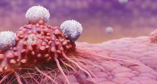 Liệu pháp miễn dịch CAR-T trong điều trị ung thư