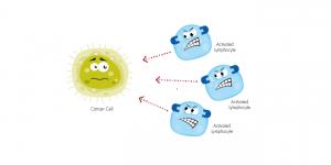 nguyên lý chung của liệu pháp miễn dịch