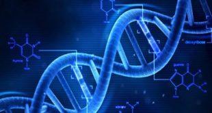 Gene trong ung thư