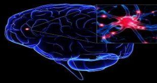 Khối u hệ thần kinh trung ương ở trẻ em thống kê