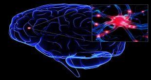 Khối u hệ thần kinh trung ương ở trẻ em: thống kê