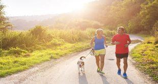 Mối liên quan giữa các yếu tố nguy cơ: Cân nặng tốt nhưng lười vận động thể lực