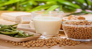 Thức ăn từ đậu nành và ung thư vú