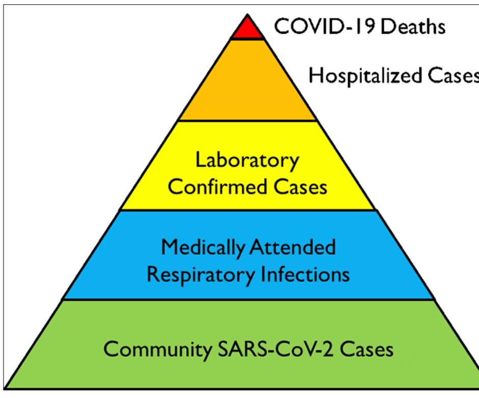 có bao nhiêu người nhiễm virus sars-cov-2 ngoài kia 2