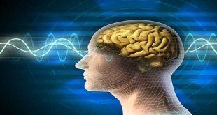 Tác dụng phụ lên nhận thức và não hóa trị