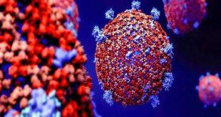 Hiệp hội Y khoa Texas liệt kê những hoạt động có nguy cơ cao nhất nhiễm COVID-19.
