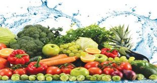 Lối sống khỏe mạnh: An toàn thực phẩm trong và sau điều trị ung thư