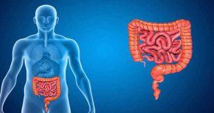 U mô đệm đường tiêu hóa- GIST- Chọn lựa phương thức điều trị