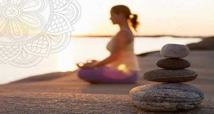 Tâm lang thang, Sự chú ý và Thiền định