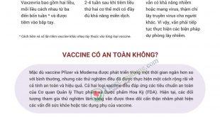 Vaccine-covid-19-infographic