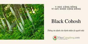 Black Cohosh - Thông tin dành cho bệnh nhân & người nhà