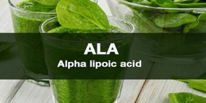 Thông tin chung về Axit alpha-Lipoic