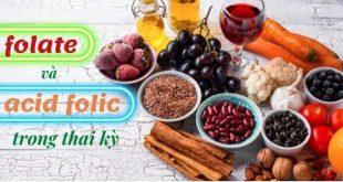 Folate và Axit Folic trong thai kỳ