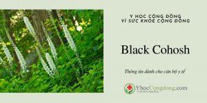 Black Cohosh - Thông tin dành cho cán bộ y tế